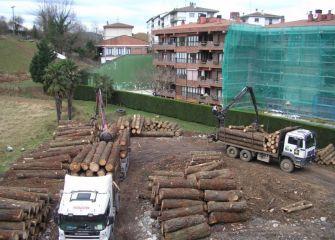 Almacén de troncos en Oiartzun