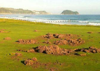 Vandalismo en el golf de Zarautz