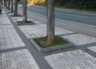 Altura bordillos árboles Paseo Urumea