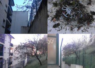 Abandono, árboles o vecinos