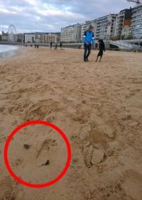 La playa como cloaca